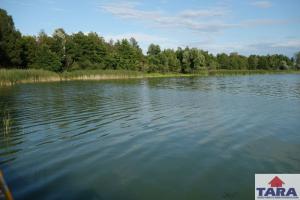 Działka Rogowo okolice